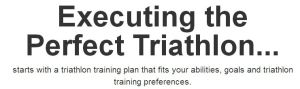 executing the perfect triathlon